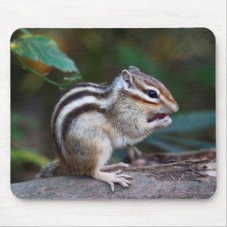 Mouse pad of sima lith, No.01