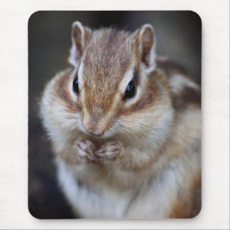 Mouse pad of sima lith, No.02