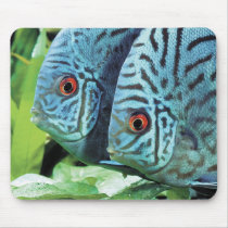 Mouse pad of turquoise deisukasu