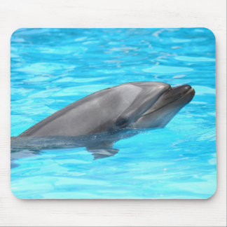 Mouse pad of van dough dolphin, No.01