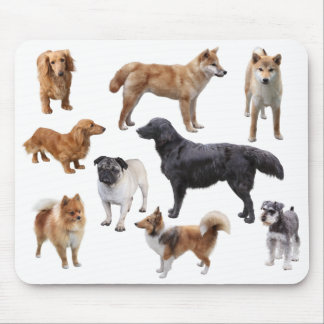 Mouse pad of various dogs, No.001