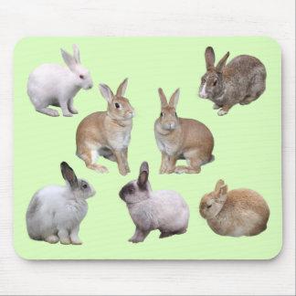 Mouse pad of various rabbits, No.04