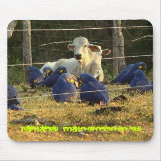 Mouse Pad - Pantanal do MS