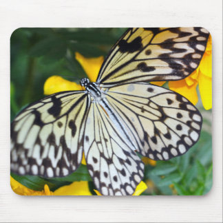 Mouse Pad/Paperkite Mouse Pad