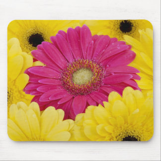Mouse Pad  -  Pink Daisy