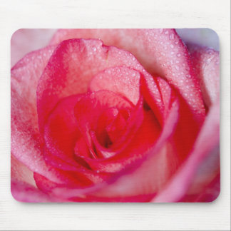 Mouse Pad  -  Pink Rose