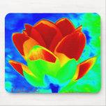 Mouse Pad - Pop Art Lily-RedBlue