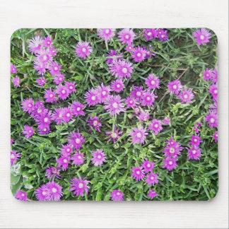 Mouse Pad - Purple Ice Plant