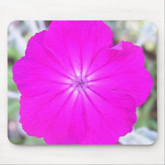 Mouse Pad - Rose Campion