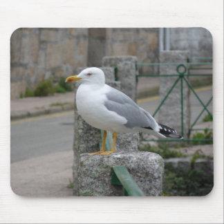 Mouse Pad Seagull. Gaviota