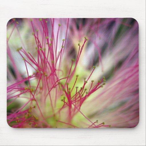 Mouse Pad - Silk Tree Blossom (Mimosa Tree)