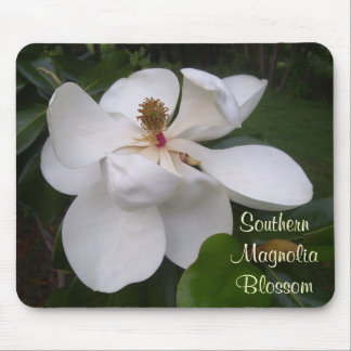 Mouse Pad - Southern Magnolia Blossom