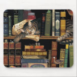 "mouse pad w/ a cat sleeping in library books<br><div class=""desc"">mouse pad with an adorable cat sleeping in between library books.</div>"