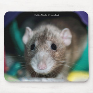 Mouse Pad with a Dumbo Fancy Rat
