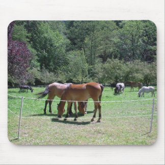 Mouse pad with horses