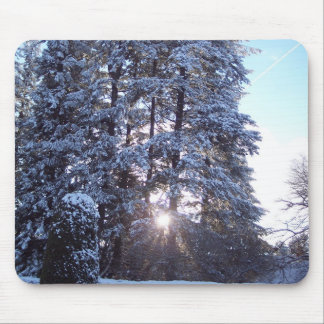Mouse pad with setting sun behind the trees.