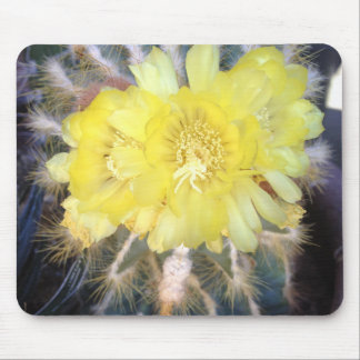 Mouse Pad Yellow Cactus Flower