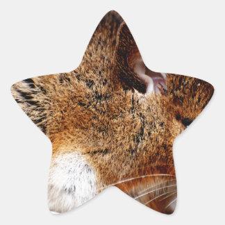 Mouse Print Star Sticker
