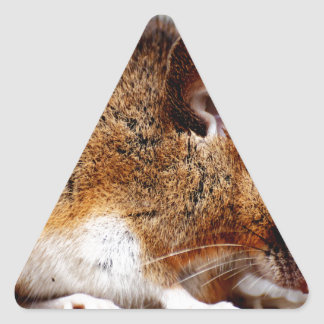 Mouse Print Triangle Sticker