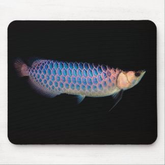 Mouse Propellant-actuated device of Asian arowana Mouse Pad