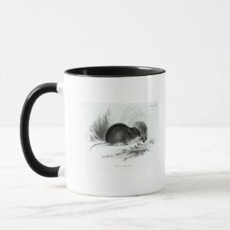 Mouse, Tierra del Fuego, South America c.1832-36 Mug