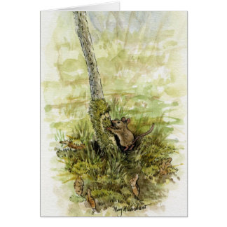 Mouse with Moss Greeting Cards