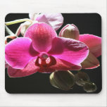 mousemat de la orquídea tapete de raton