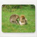 Mousemat del mono tapete de raton