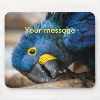 Mousemat featuring cute Hyacinth Macaw parrot Mouse Pad