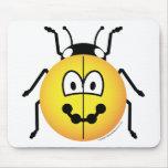 Ladybird emoticon   mousepad