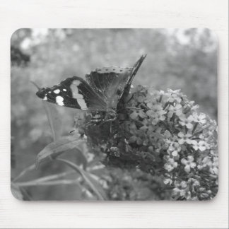 Mousepad  - Admiral Butterfly in Black & White