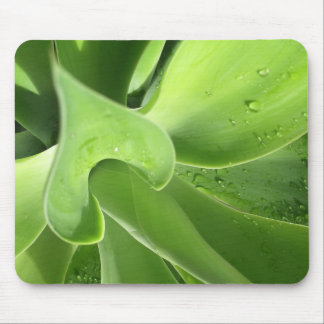 Mousepad Agave green