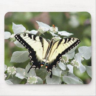 Mousepad amarillo de la mariposa del swallowtail