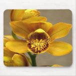 Mousepad amarillo de la orquídea tapete de ratones
