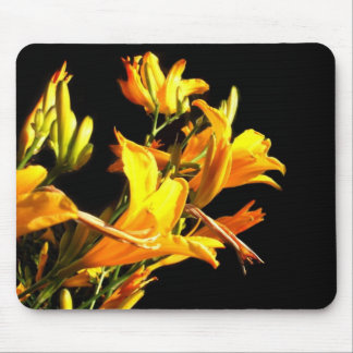 Mousepad amarillo de los Daylilies Tapete De Ratón