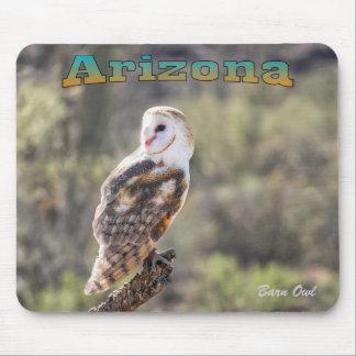 Mousepad: Barn Owl #1 Mouse Pad