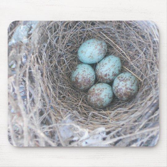 Mousepad Bird's Nest with Eggs Photography