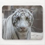 Mousepad blanco del tigre alfombrillas de raton