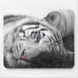 Mousepad blanco del tigre tapete de ratones