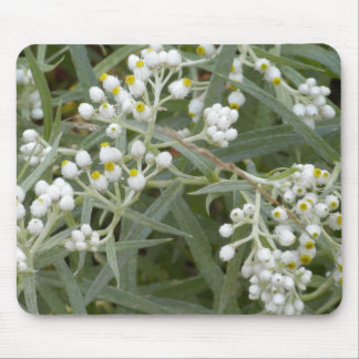 Mousepad blanco del wildflower alfombrillas de ratones
