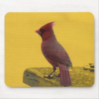 Mousepad cardinal septentrional tapete de raton