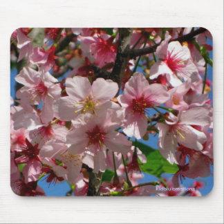mousepad - cherry blossoms