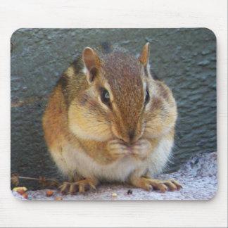 Mousepad, Chipmunk Mouse Pad