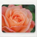 Mousepad color de rosa anaranjado tapetes de ratones