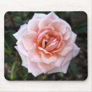 Mousepad color de rosa rosado miniatura