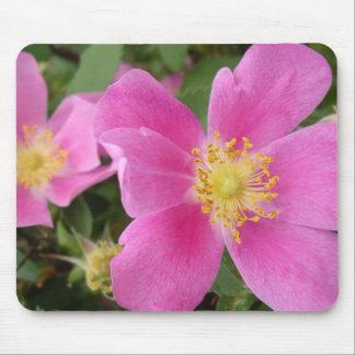 Mousepad color de rosa salvaje