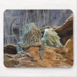 Mousepad con dos lagartos curiosos alfombrillas de raton