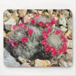 Mousepad con el cactus floreciente tapete de ratón