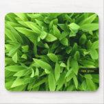 Mousepad de bambú verde alfombrilla de ratón