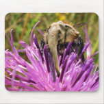 Mousepad de Bumblephant Tapetes De Raton